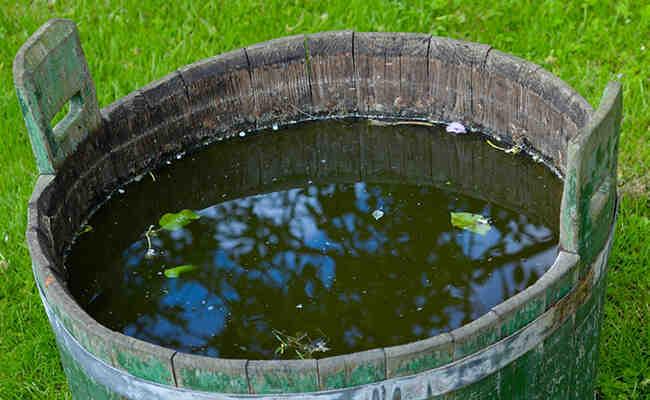 Quelle Pompe pour récupérateur d'eau de pluie ?