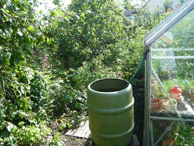Tout savoir sur les récupérateurs d'Eau pour votre Jardin