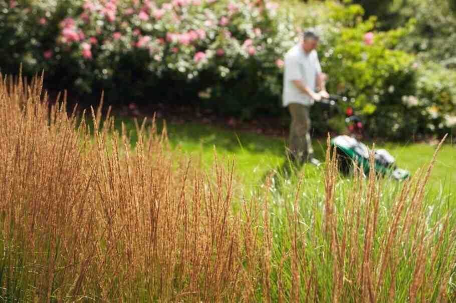 Comment bien tondre la pelouse de son jardin ?