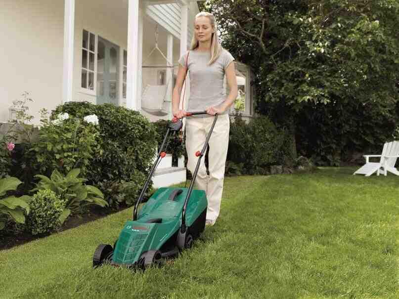 Quand Peut-on tondre la pelouse ?